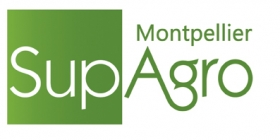 Leer más:I Convocatoria de Movilidad Estudiantil en Francia