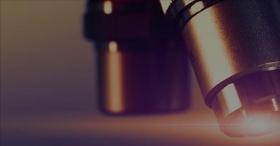 Leer más:Actualización en conceptos de investigación con animales de laboratorio.