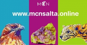 Leer más: El museo de Ciencias Naturales de la UNSa presentó su sitio web.