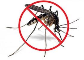 Leer más:Pulverización del edificio universitario para la prevención de mosquitos