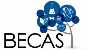 Leer más:Convocatoria para Beca Doctoral / postdoctoral