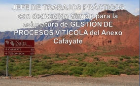 """Leer más:Convocatoria para cargo de Jefe de T.P. de """"Gestión de Procesos Vitícolas"""""""