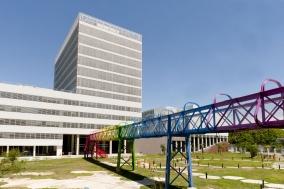 """Leer más:""""Mesa Redonda: Transferencia de tecnología en Acuicultura. Diálogo entre la producción, la..."""